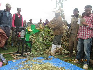 LIVES zonal coordinator demonstrating with maize how the chopper works  (Photo:ILRI\ Abule Ebro)