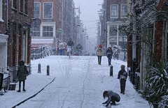 Suddenly the winter is back in Amsterdam