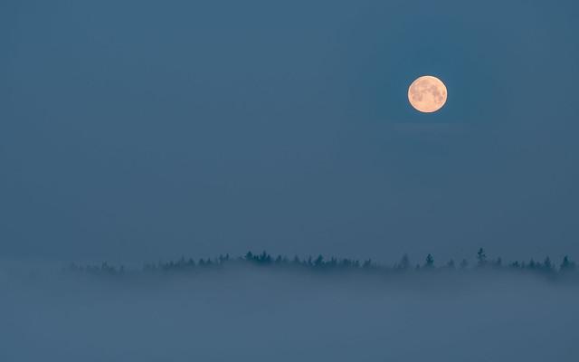 Der Vollmond scheint über dem Nebelmeer