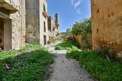 Poggioreale, Sicily, 096