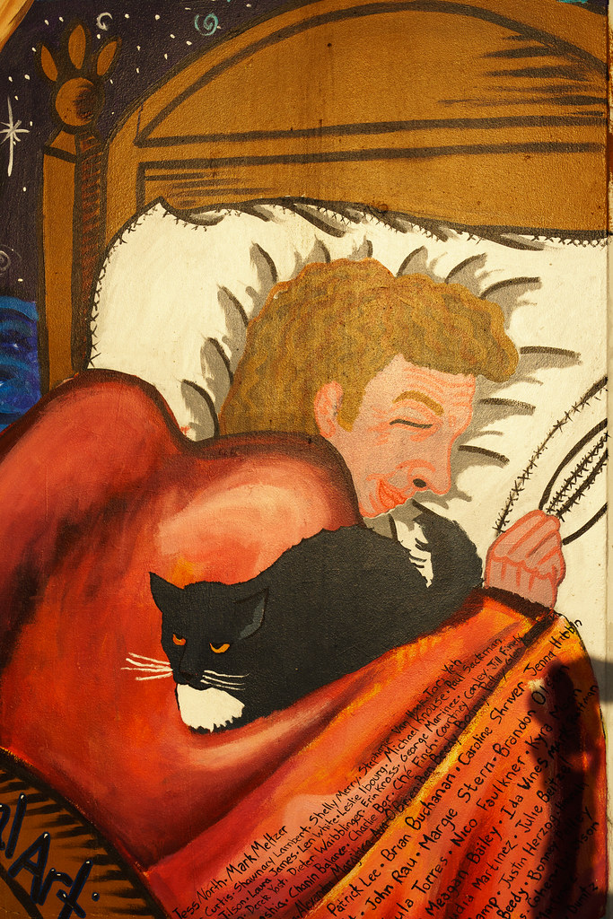 A mural depicts someone sleeping with a cat next to them in their bed