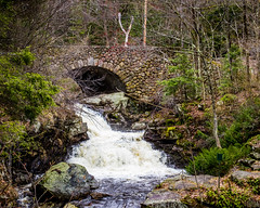 Bridge at Doanes Falls