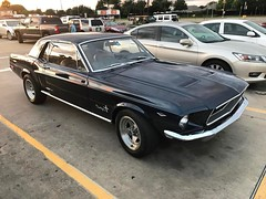 Nice '68 at the grocery store. #mustang #ford #1968mustang