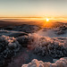Frozen-6 by Everett Adams
