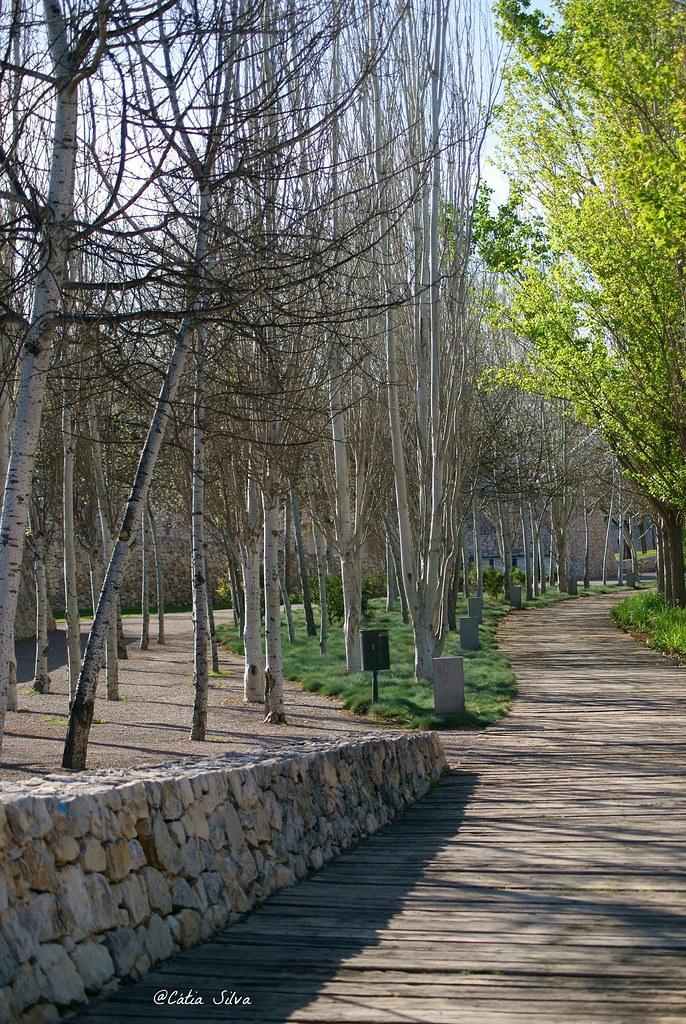 Valencia_Primavera_ Jardines del Turia (4)