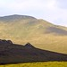 Landscape Campbell Island Subantarctic New Zealand UNESCO World Heritage Status Nature Reserve