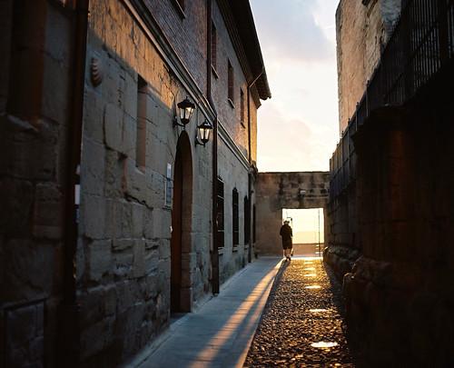 El Camino Photo