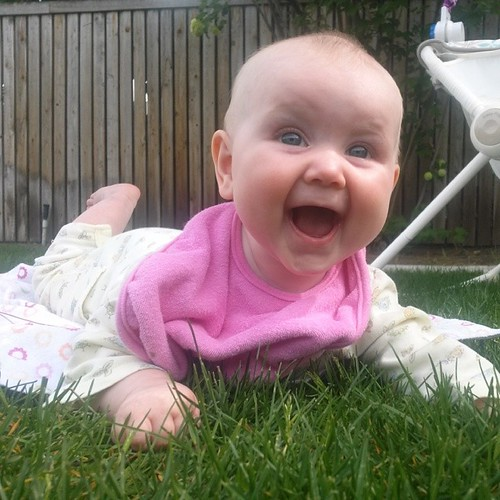 First experience with grass. I'd say she's a fan.