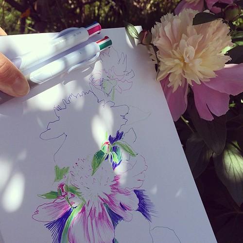Peony #sketchbook #flower #ballpointpen
