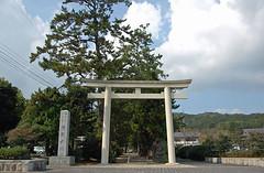 shrine206