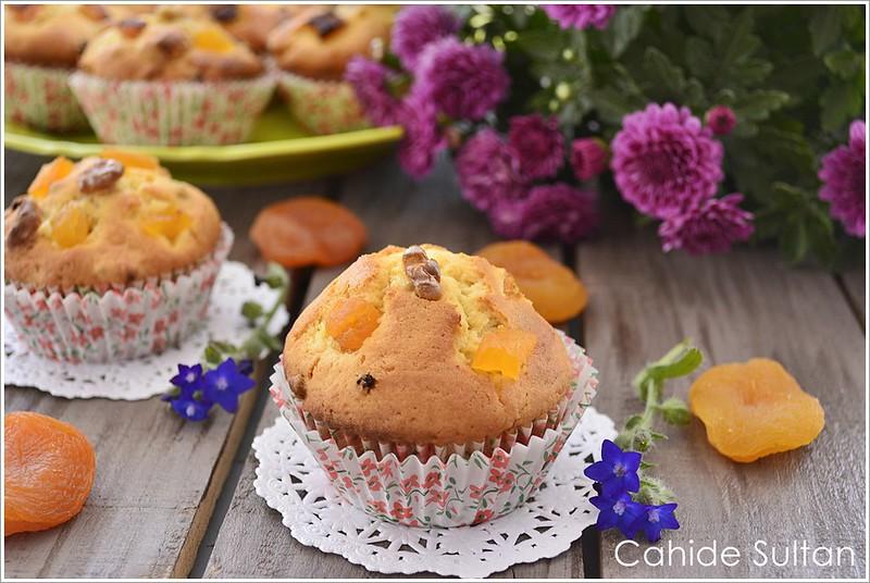 kayısılı kek resmi