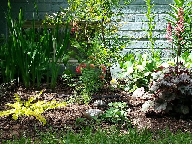 sally-garden6
