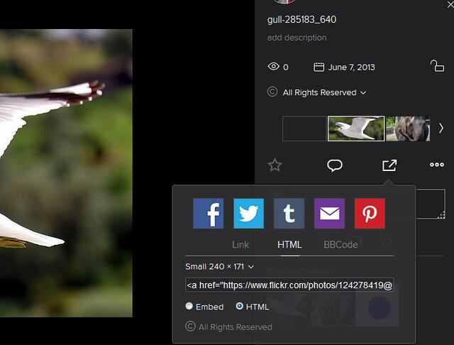 Flikr-Photostream-3