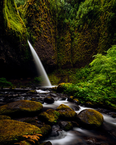 green nature water oregon portland landscape waterfalls pacificnorthwest columbiarivergorge ponytailfalls