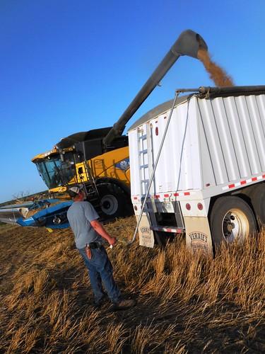 Matt tarping the truck