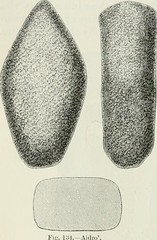 "Image from page 203 of ""The ancient stone implements, weapons, and ornaments, of Great Britain"" (1872)"