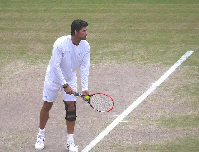 Wimbledon 2014 (53a) (1)