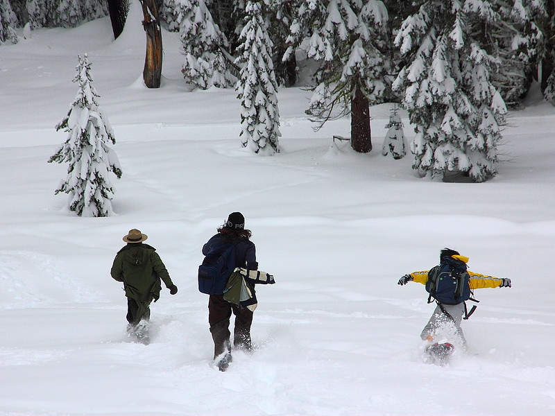 IMG_8436 Ranger-Led Snowshoe Walk