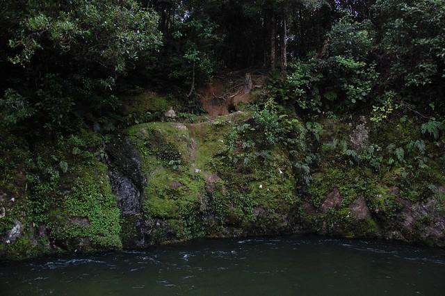Rio en Nueva Zelanada