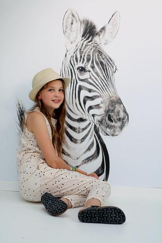 bij de zebra