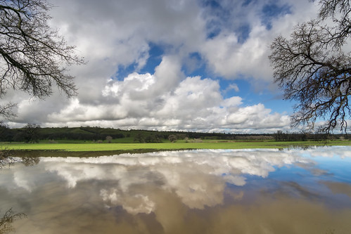 pond reflection clouds rural renerodriguezphotography
