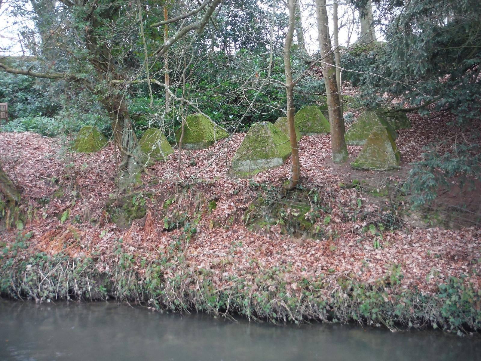 Dragon's Teeth on other side of Wey, Waverley Abbey SWC Walk 144 Haslemere to Farnham - Waverley Abbey Extension