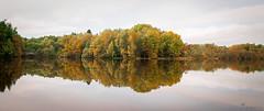 Joyau d'automne