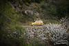 Renault Clio Sport - Alberto Hernandez