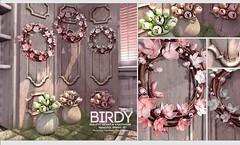 Fameshed - Birdy - Ariskea