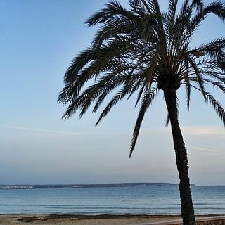 Image de Cala Estància plage de sable. square squareformat iphoneography instagramapp uploaded:by=instagram foursquare:venue=4c836f73dc018cfa329dd86c