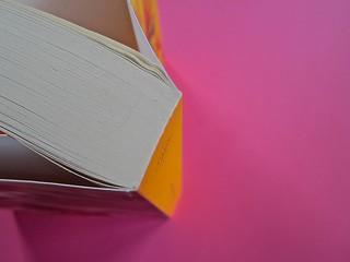 Golden boy, di Abigail Tarttelin. Mondadori 2014. Art director: Giacomo Callo, graphic designer: Susanna Tosatti; alla cop. ©Luka Knezevic; alla q. di cop. @Daniel Hambury. Taglio superiore, dorso (part.), 1