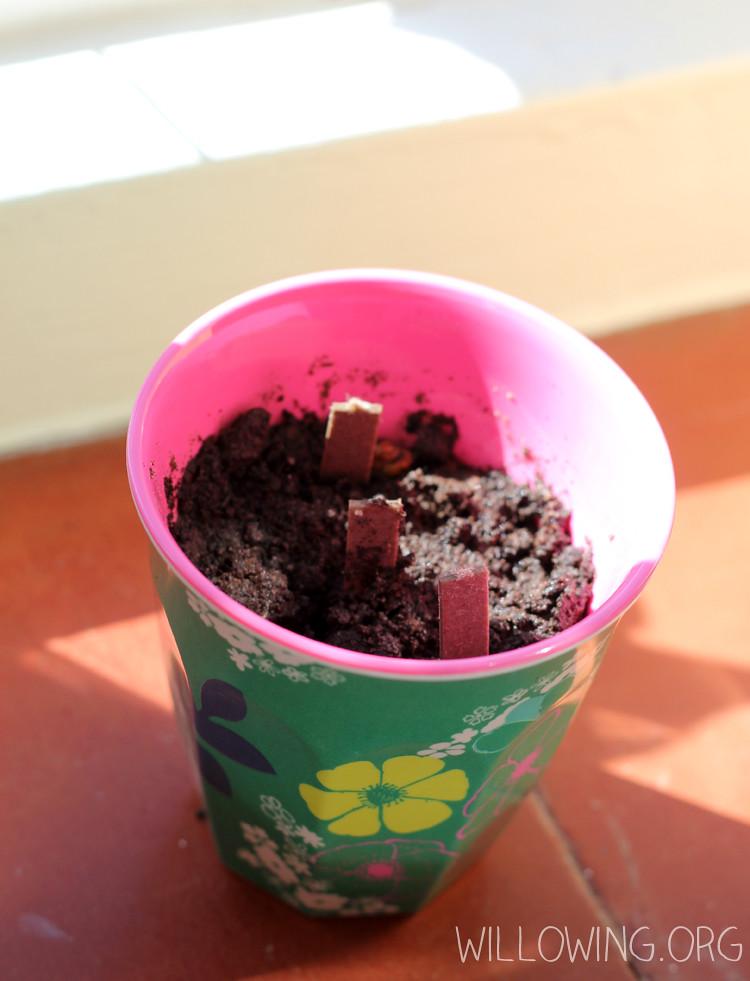 Eco-friendly Gift Idea 8