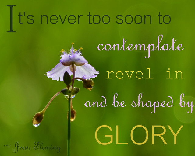 shaped by glory