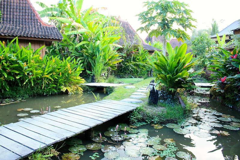 Bali_8905