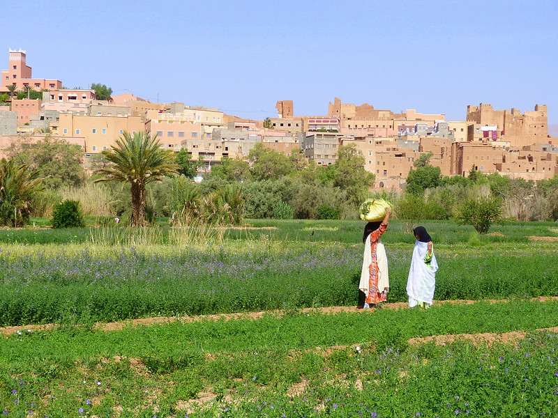 Women in the countryside of Morocco