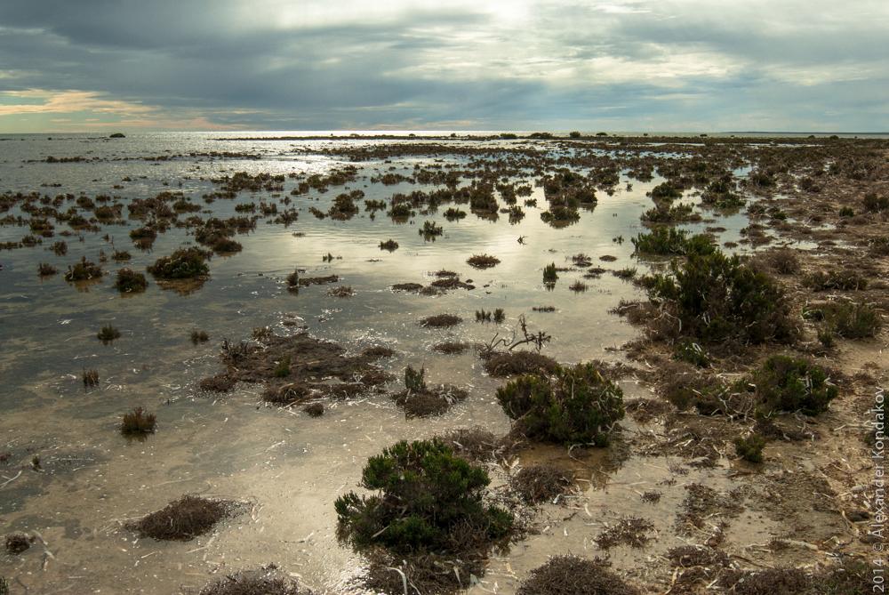 Wallaroo South Australia-13
