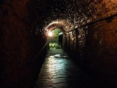 Krátký výlet pro cyklisty a gurmány: Žernosecké vinařství a restaurace Větruše