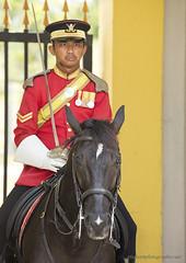 Guard XOKA0186bs