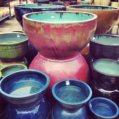 #ceramic #pots #gardencentre