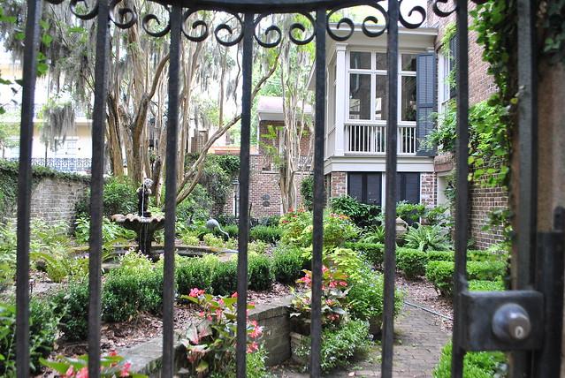 Savannah_garden