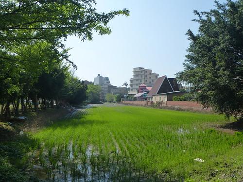 Taiwan-Lukang-retour au centre-ville (8)