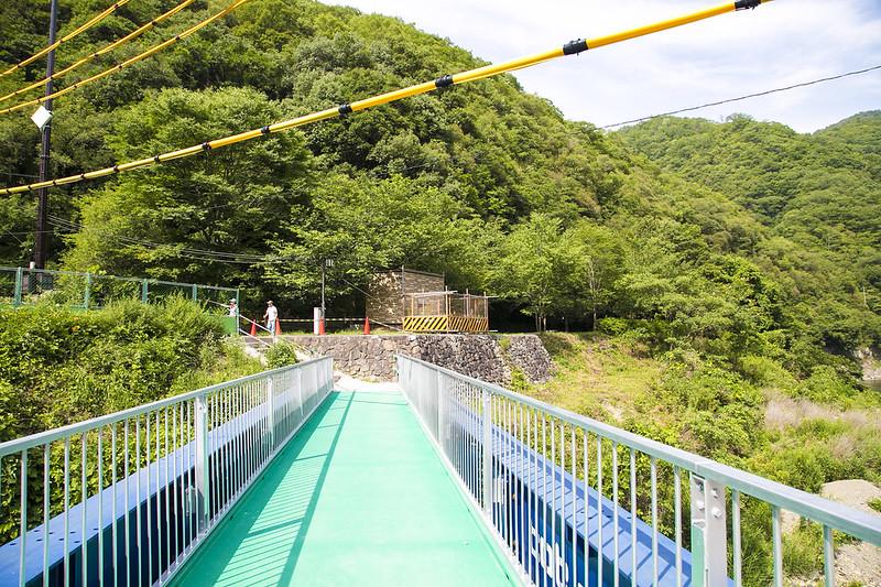 武庫川渓谷廃線ハイキング(生瀬ー武田尾)626