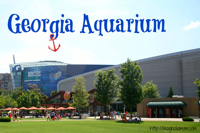 Georgia Aquarium {Staycation 2014}