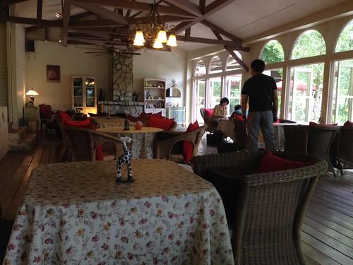 陽明山19號咖啡館 (3)