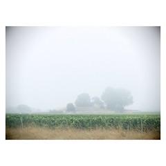 Un peu de brouillard sur la route ce matin