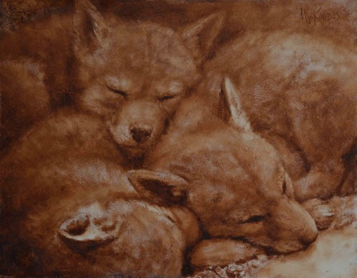 The Baby Coyotes