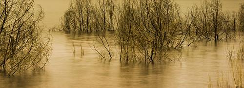 water landscape eau different dam australia h2o extérieur topf200 inondation splendid splendour waterscape splendor googong googongdam canberraarea greystump copyrightcolinpilliner