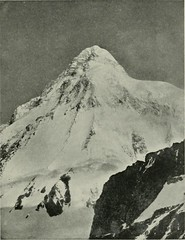 """Image from page 350 of """"Karakoram and western Himalaya 1909, an account of the expedition of H. R. H. Prince Luigi Amadeo of Savoy, duke of the Abruzzi"""" (1912)"""