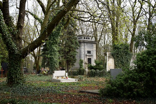 starycmentarzwłodzi theoldcemeteryinłódź cemetery graveyard grave tomb ivy nature tree trees spring łódź lodz polska poland