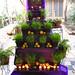 Altar 5 por antares_86